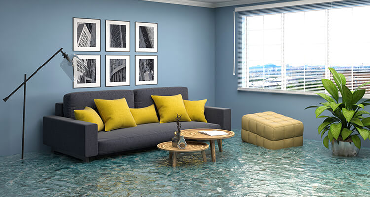 Guide to the Water Damage Restoration Process | Amerestore